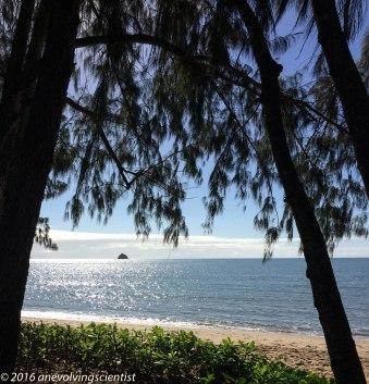 Scout Hat Island, Palm Cove, Far North Queensland